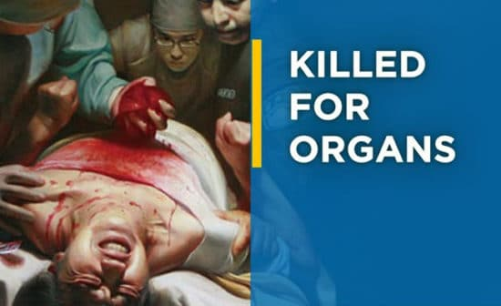 What is forced organ harvesting?