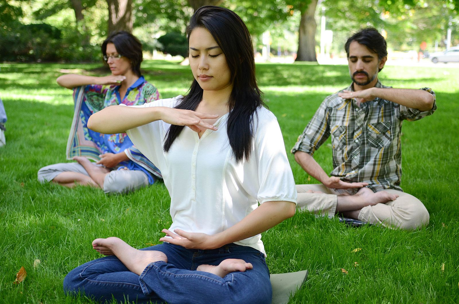 People who practice Falun Gong (also known as Falun Dafa) doing the sitting meditation in a park in Canada. In China, people are jailed, tortured, or even killed for peacefully practicing Falun Gong.